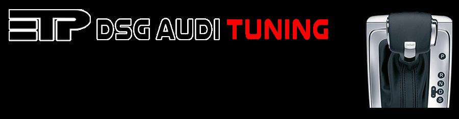 dsg_audi.png